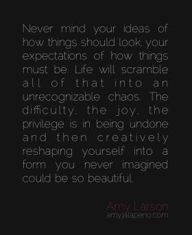ideals-expectations-life-relationships-chaos-joy-metamorphosis-beauty-creative-living-difficulty-struggle-ease-letting-go-amyjalapeno-dailyhotquote