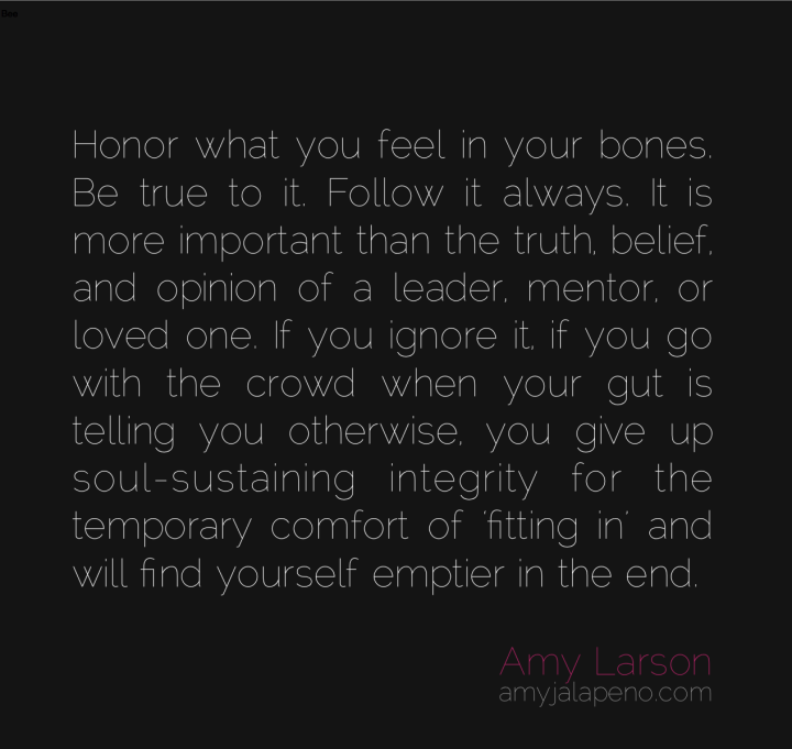 integrity-honor-feeling-spiritual-rebel-leading-relationships-spirituality-heart-truth-belief-ignore-the-crowd-be-still-amyjalapeno-dailyhotquote